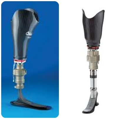 transtibial prothesis Below the knee (transtibial) prosthesis description how does one effectively replace an amputated lower leg a below-the-knee (btk) prosthesis must have the.